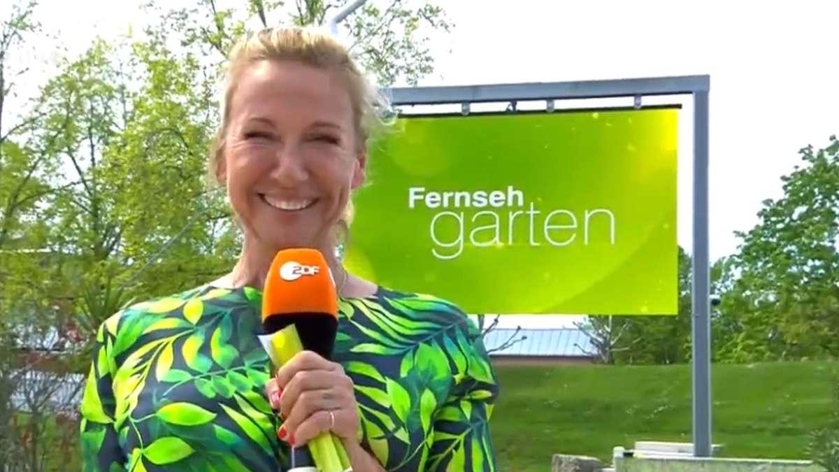 Fernsehgarten-ist-zur-ck-ein-Auftritt-sorgt-prompt-f-r-Emp-rung-Damit-habt-ihr-euch-keinen-Gefallen-getan-ZDF-